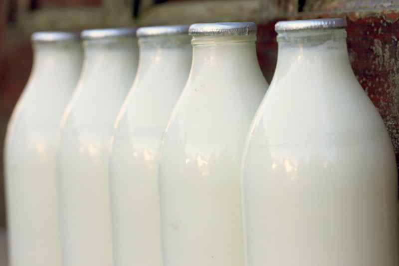 https://mamalyga.org/mleko-prawdy-i-mity-na-temat-mleka/